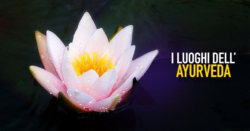 sfondo nero, sulla sinistra un fiore di loto e sulla sinistra la scritta I luoghi dell'Ayurveda