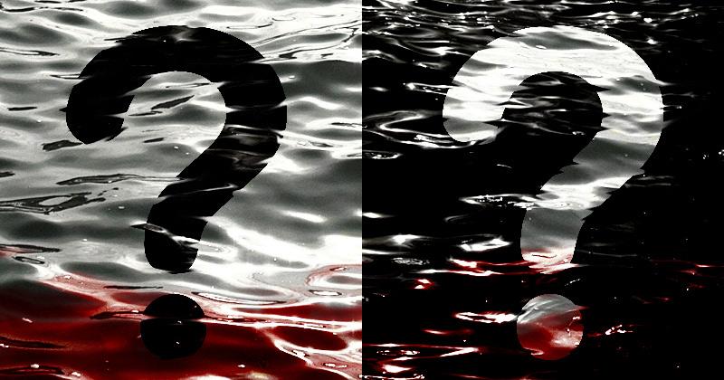 Il Caso Dei Marò Nella Stampa Internazionale